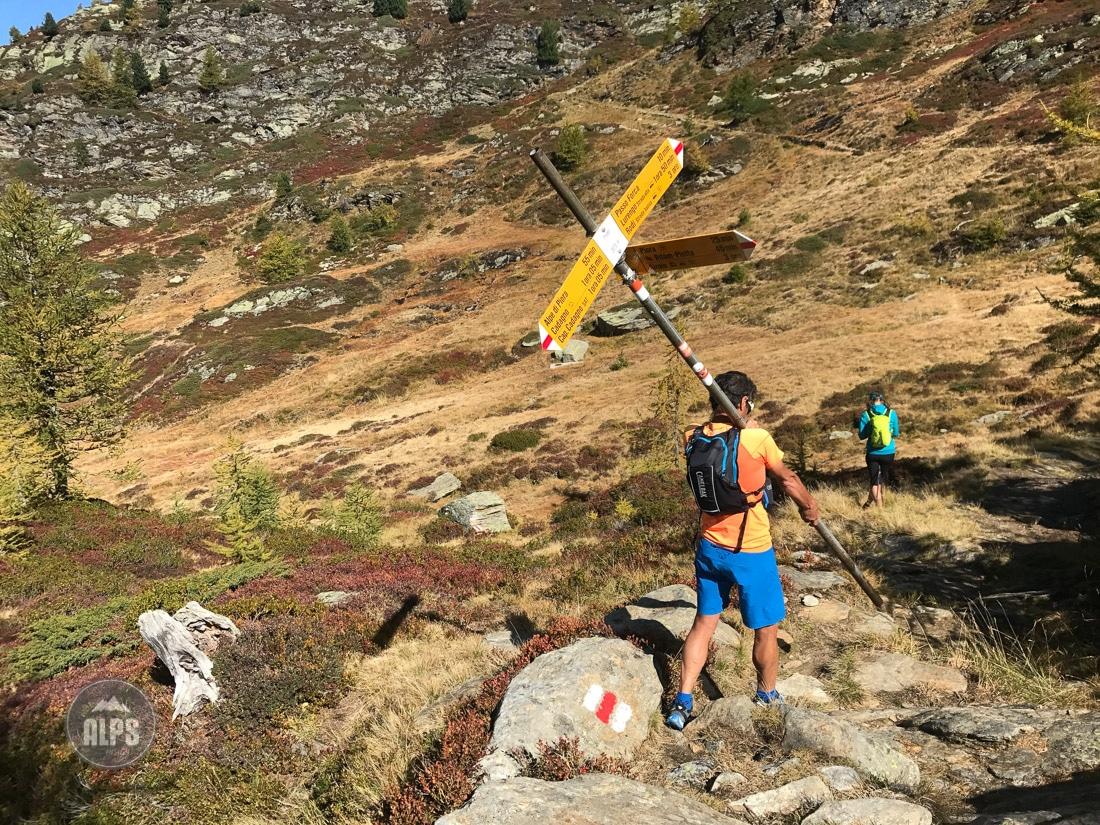 Swiss Alps Trail Running book, Run the Alps Switzerland | 1100 x 825 jpeg 569kB